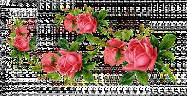 9dc75d46-9de6-45d9-a737-be1b48d7ee5c.png